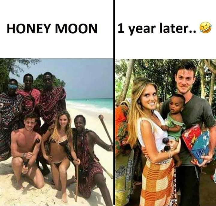 funny honeymoon jokes memes